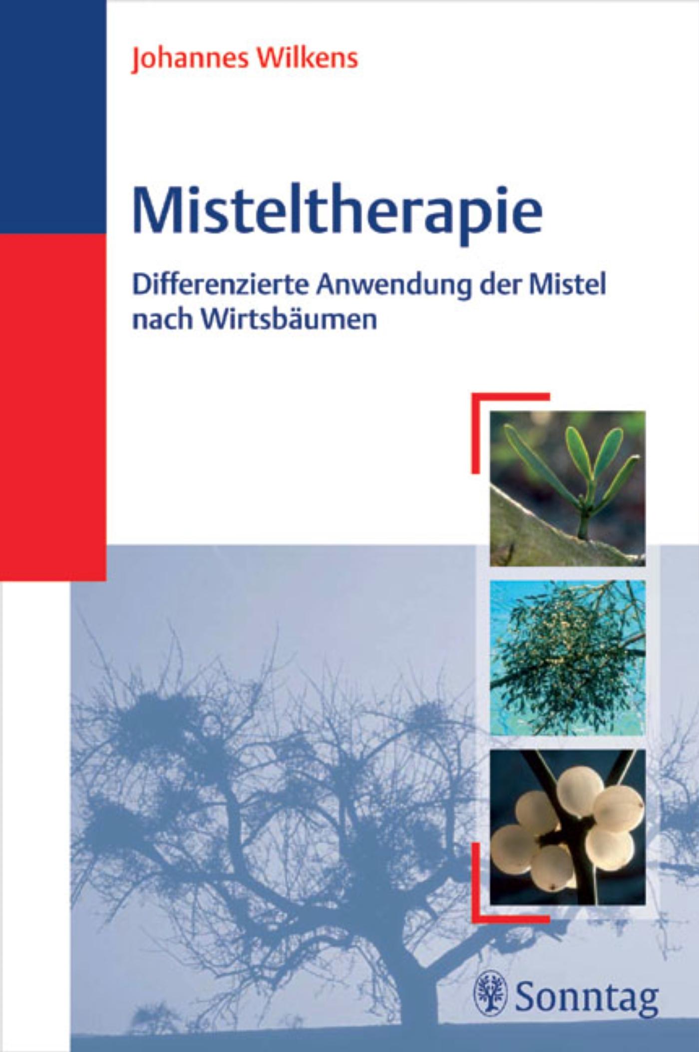 Misteltherapie
