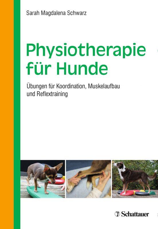 Physiotherapie für Hunde
